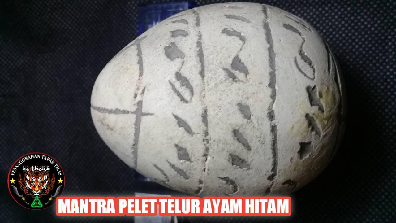 Mantra Pelet Telur Ayam Hitam
