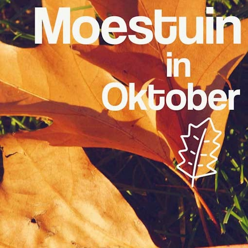 moestuin in oktober tips