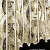 वेश्या एविलन रो का उपाख्यान: ब्रेख़्त की कविताएँ - - भारत कालरा