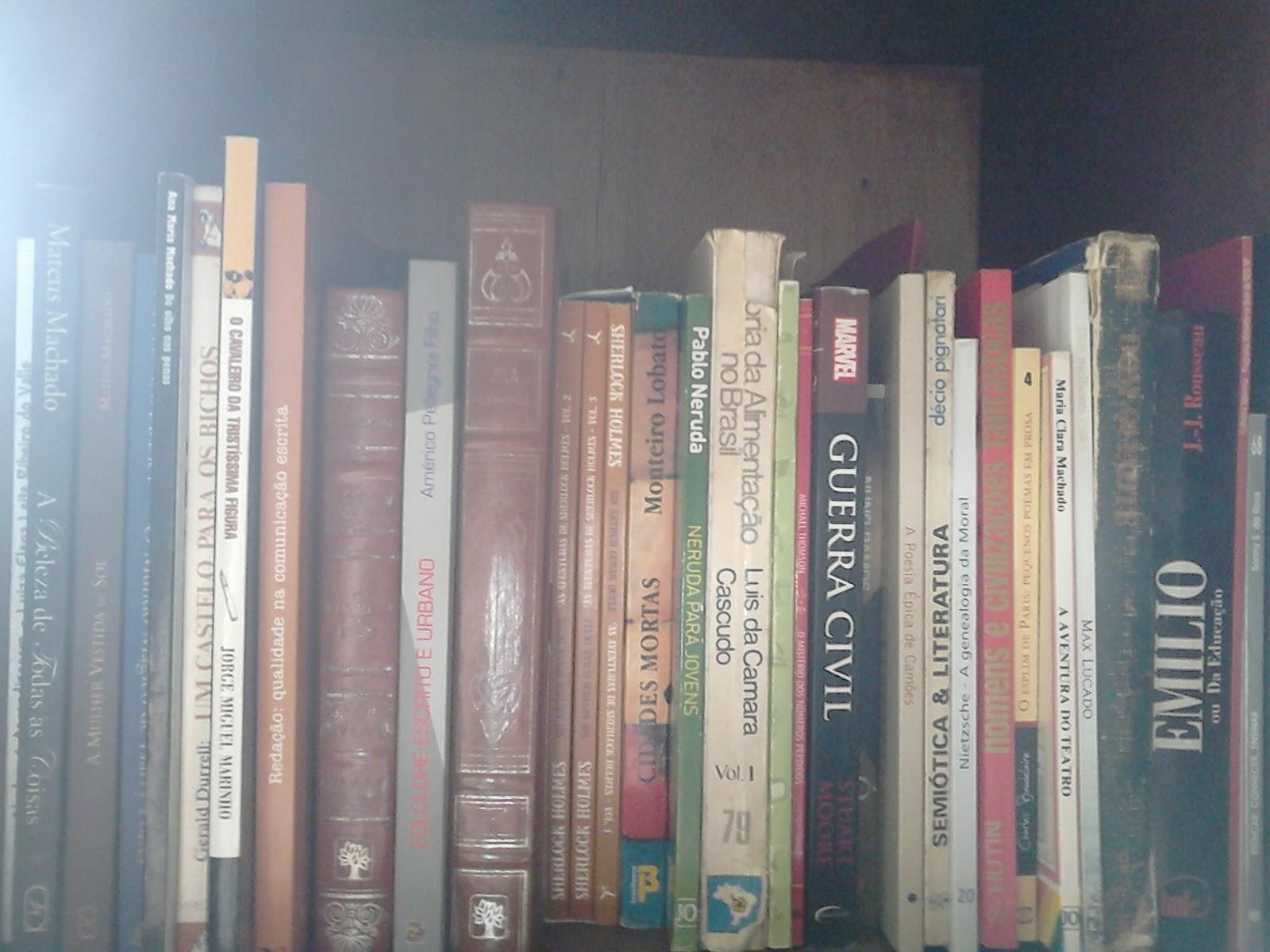 625df10af Na verdade, pra mim, é muito mais fácil trocar um livro que ainda não li do  que o que eu já li, porque depois que leio um livro, sei lá, parece que a