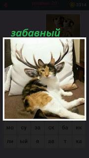 на подушке лежит забавный кот, где нарисованы рога и большие уши
