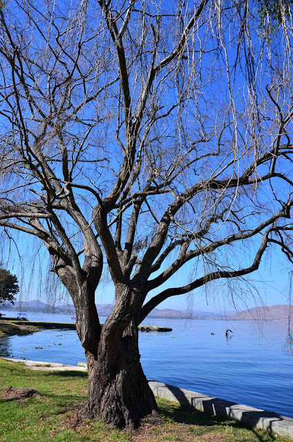 Picnic at Hartbeespoort Dam #SouthAfrica #PhotoYatra #TheLifesWayCaptures