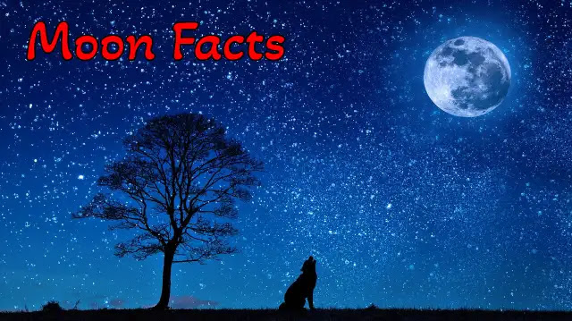 [100+] Amazing & Unbelievable Facts About Moon In Hindi