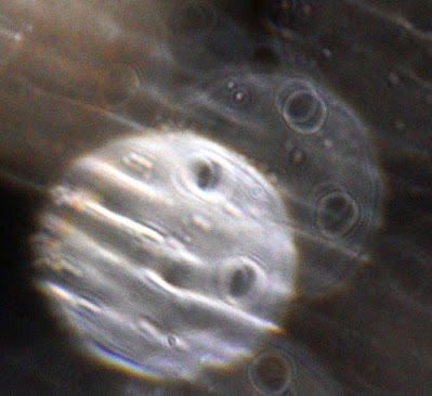 orbs with stripes and holes