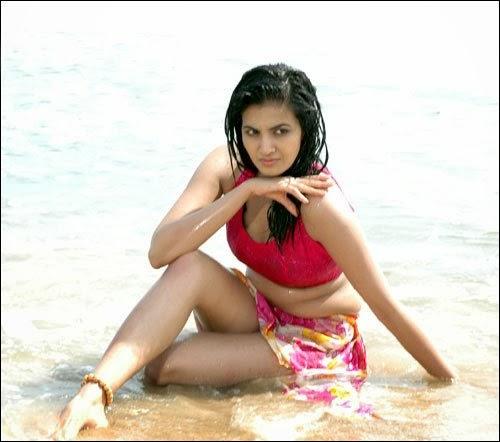 Arya Herione Anuradha Mehta Hot Bikini Photos