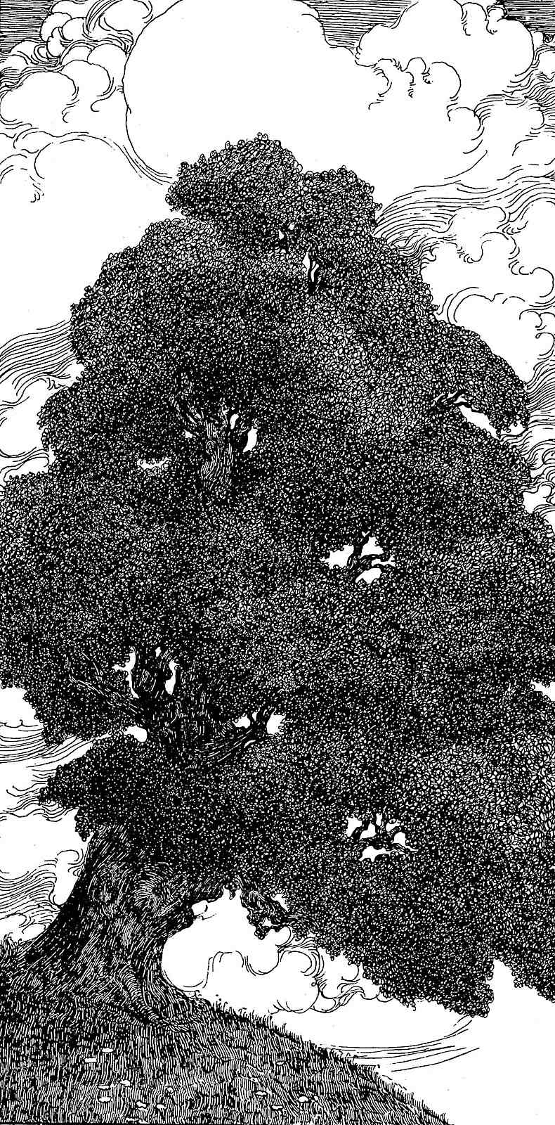 a Willy Pogany illustration of a giant tree on a hill