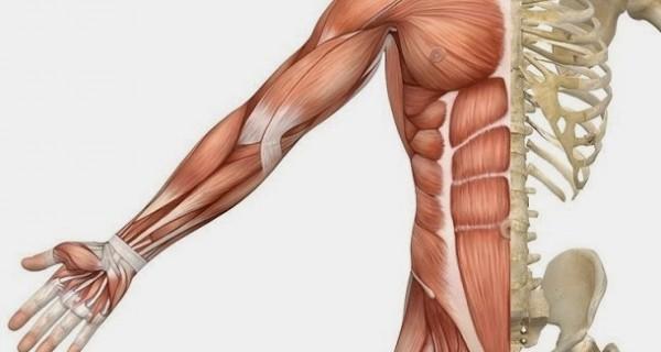 Benefícios do Exercício Físico (SAIBA DA VERDADE) Os10 principais