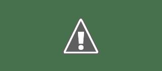 How to Reset Epson Printer with Adjustment Program