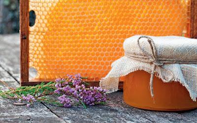 Γιατί το μέλι ερείκης έγινε της μόδας