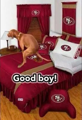 Good boy #49 #49ers