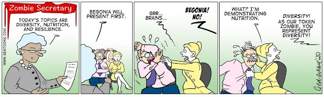 """Panel 1: the boss says to the audience of employees, """"Today's topics are Diversity, Nutrition, and Resilience.""""  Panel 2:  she continues, """"Begonia will present first."""" Panel 3: Begonia turns to the man sitting next to her and reaches for him, growling, """"brains,....gr...."""" and the boss shouts, """"Begonia!  No!""""  Panel 4: Begonia, now, holding the terrified coworker by his hair and tie, turns to the boss, and says, """"What?  I'm demonstrating nutrition."""" the boss shouts, """"Diversity!  As our token zombie, you represent diversity!"""""""