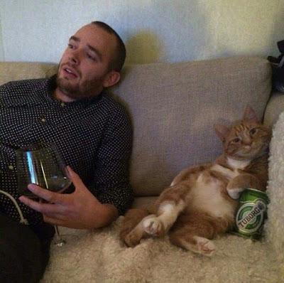 Mann mit Bier und Katze auf der Couch