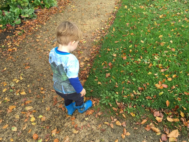 toddler-standing-in-leaves-on-path