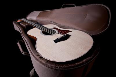 Cửa hàng bán đàn Guitar Taylor GS Mini-E ở Tphcm