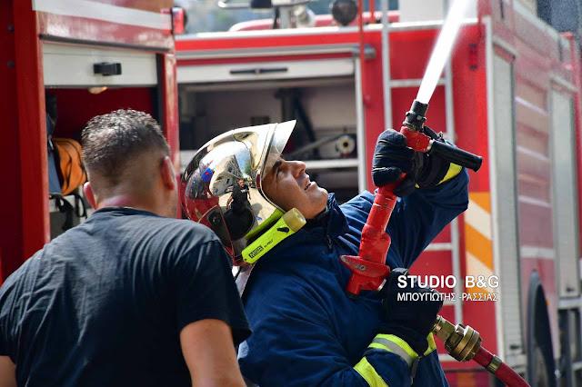 Αργολίδα: Πυρκαγιά στην Ασίνη