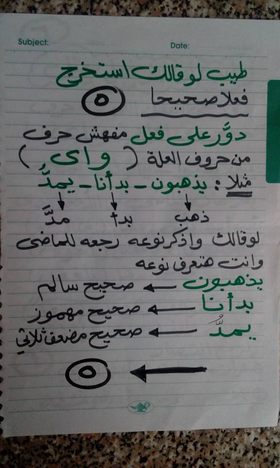 تحميل مراجعات وامتحانات اللغة العربية والدين للصف الأول الإعدادى ترم أول 2020 5