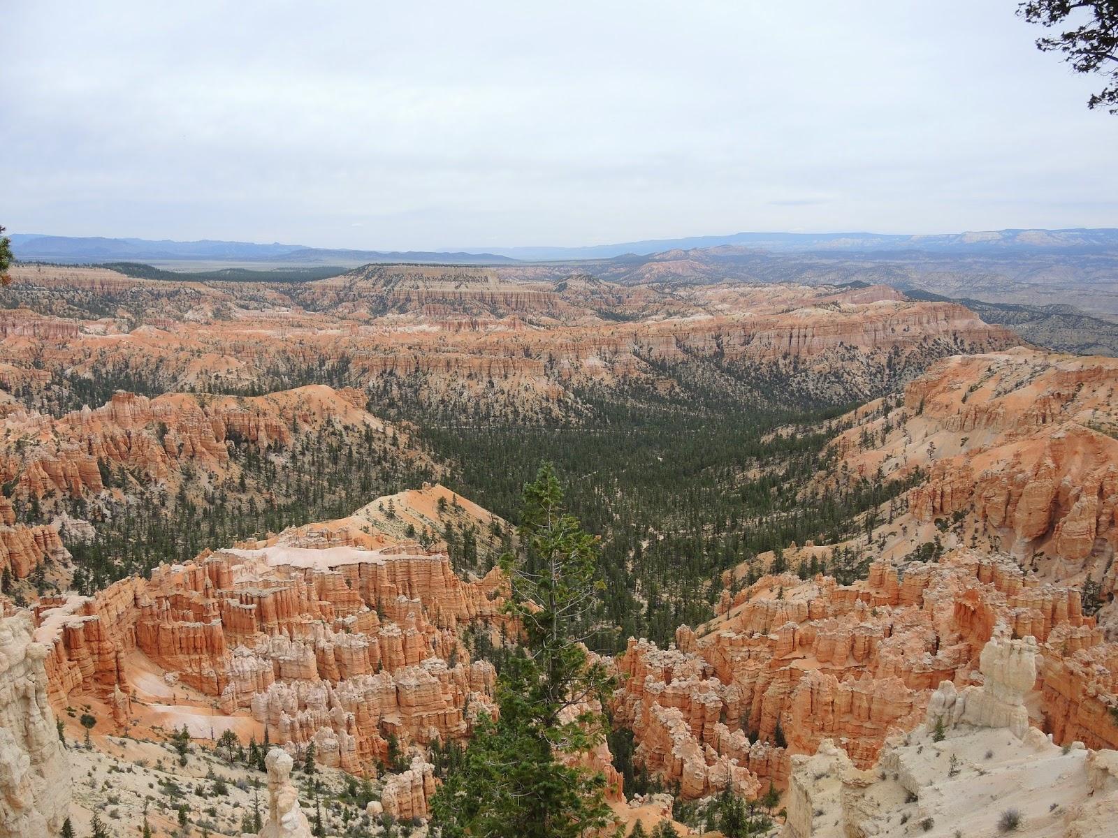 Bryce Canyon National Park 布萊斯峽谷國家公園 (上)