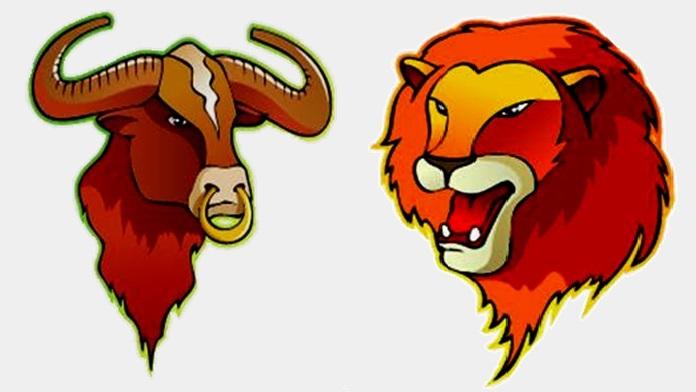 Compatibilità tra Toro e Leone