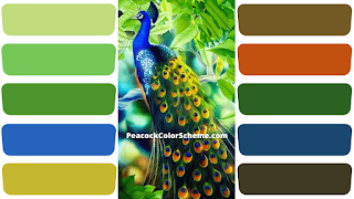 peacock colors, peacock color scheme