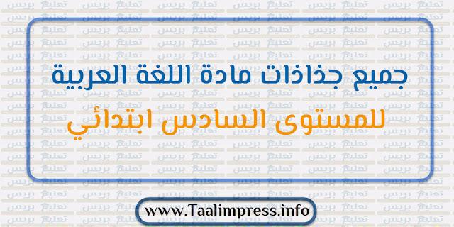 جميع جذاذات مادة اللغة العربية للمستوى السادس ابتدائي