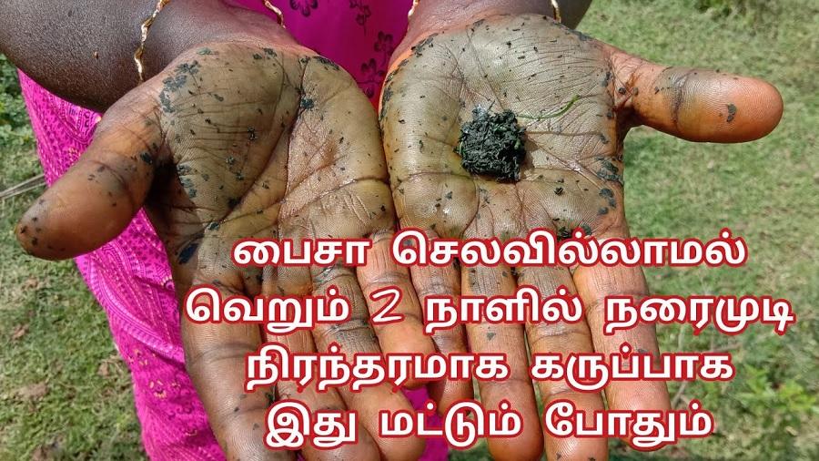 பைசா செலவில்லாமல் நரைமுடி நிரந்தரமாக கருப்பாக இது மட்டும் போதும்