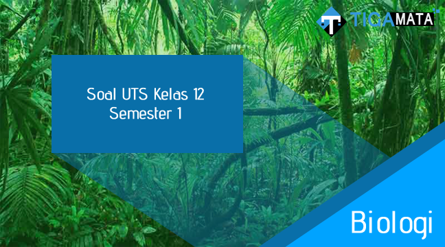 75 Soal dan Jawaban UTS Biologi Kelas 12 Semester 1