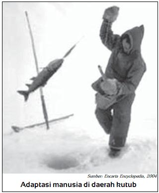 Contoh Adaptasi Genetis di lingkungan kutub