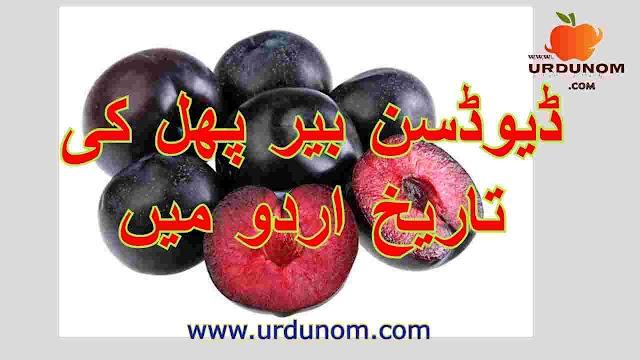 ڈیوڈسن بیر پھل کی تاریخ اردو میں | History of Davidson Berry Fruit in Urdu