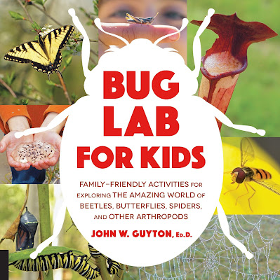Bug Lab for Kids offers a variety of insect-centered activities and will keep kids busy and engaged! Perfect for summer! #BugLabForKids #NetGalley