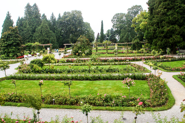 Rosengarten vor dem Schloss Insel Mainau