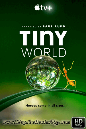 Tiny World [1080p] [Latino-Ingles] [MEGA]