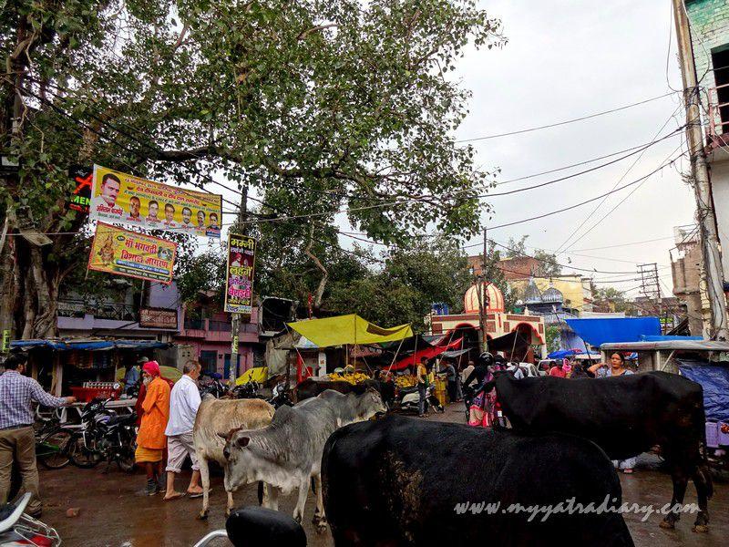 Pics Parmat Ganga Ghat Anandeshwar Mandir Kanpur, Uttar Pradesh