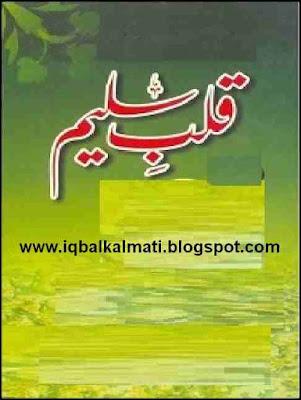 Qalb e Saleem Urdu Naat, Article, Poem and Poetry Collection