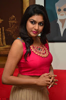 Akshita super cute Pink Choli at south indian thalis and filmy breakfast in Filmy Junction inaguration by Gopichand ~  Exclusive 049.JPG