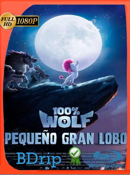 100% Wolf: Pequeño gran lobo (2020) 1080p BDRip Latino [GoogleDrive] [tomyly]