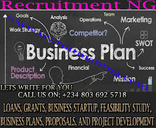 Business Plans/Business Development/Feasibility Writers/Startup