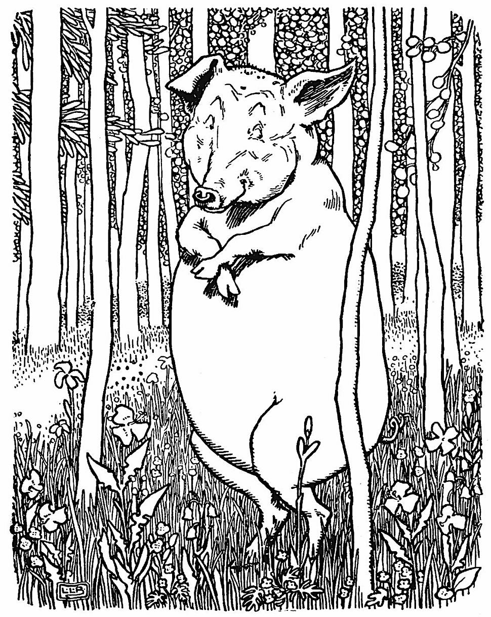 L. Leslie Brooke illustration of a friendly smiling humble pig in the woods