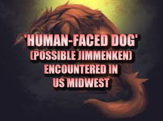'Human-Faced Dog' (Possible Jinmenken) Encountered in US Midwest