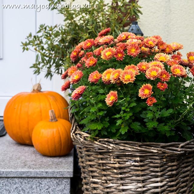 Herbstdekoration am Treppenaufgang