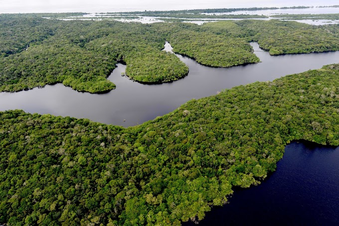 Amazonas firma parceira com governo alemão para execução dos Zoneamentos Ecológicos