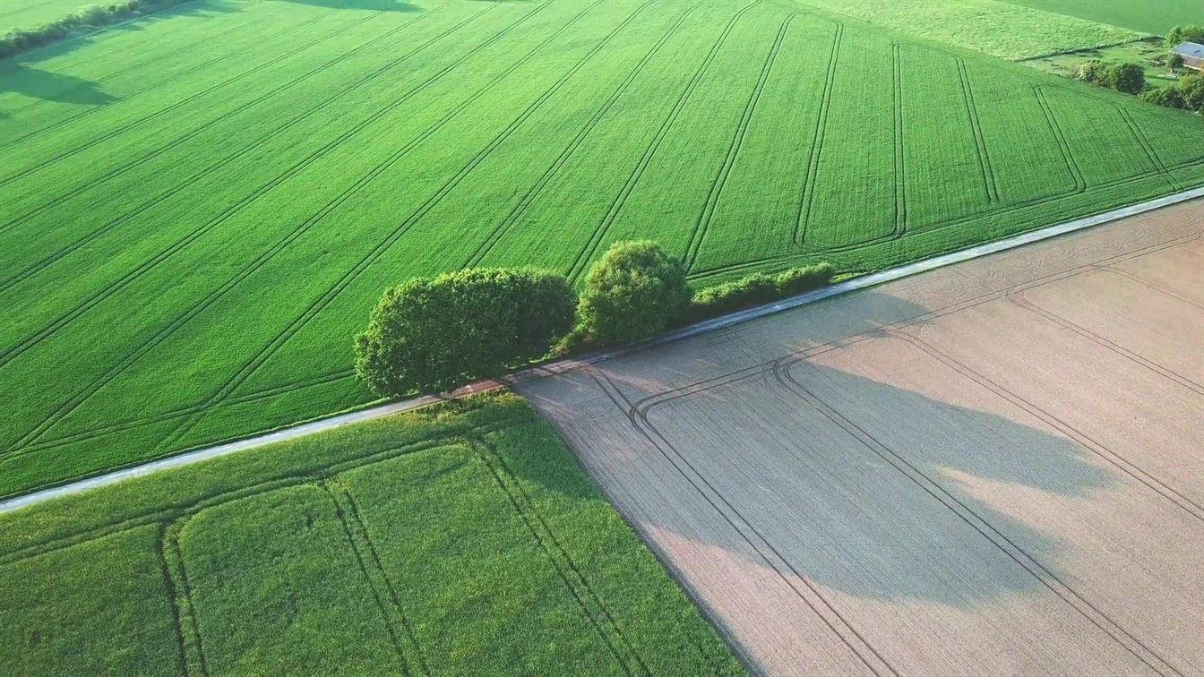 Farmland Royalty-Free Images
