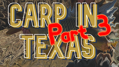 Texas Freshwater Fly Fishing, TFFF, Fly Fishing Texas, Texas Fly Fishing, Carp of the Fly, Carp Fishing Texas, Texas Carp Fishing, Fly Fishing For Carp, Gabe Cross, Gabe Cross Fly Fishing, Carp in Texas Part 3