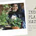 New Indoor Plants Haul, Care, Pricing and More #Houseplantlover