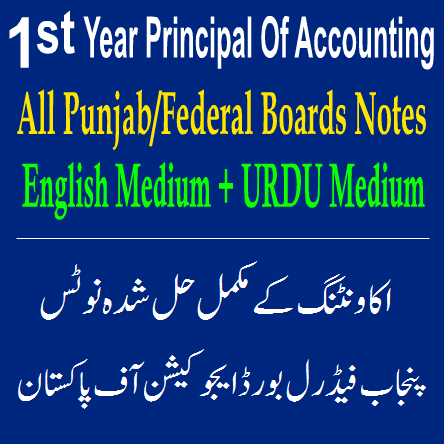 Easy Notes Accounting In PDF Punjab Federal Boards