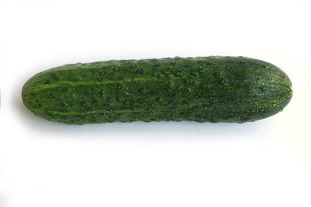 Female Lecturers battle for my cucumber