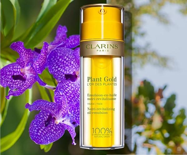 plant-gold-clarins-orquidea