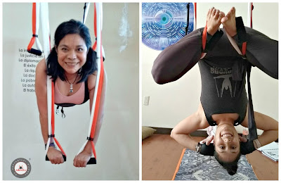 yoga aereo, mexico, air yoga, aeroyoga, fly, flying, maestria, formacion, profesores, acreditacion, instructorado, profesorado, certificacion, body