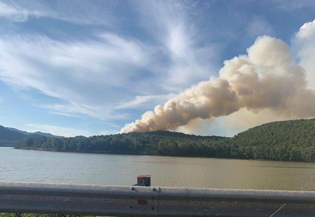 Cháy rừng tại Sóc Sơn, Hà Nội gây thiệt hại hơn 1ha rừng