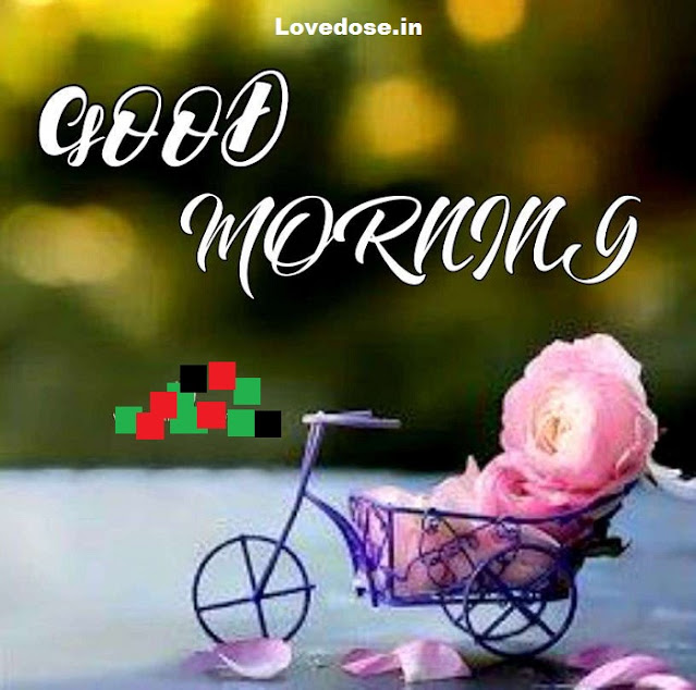 good morning quotes & wishes