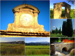 Cascine - Tavola - Prato